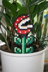 pixelpflanze